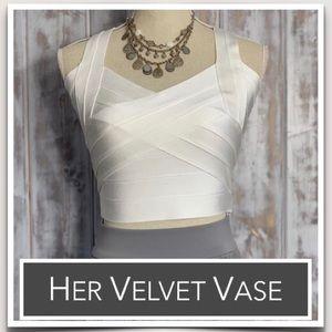 Her Velvet Vase